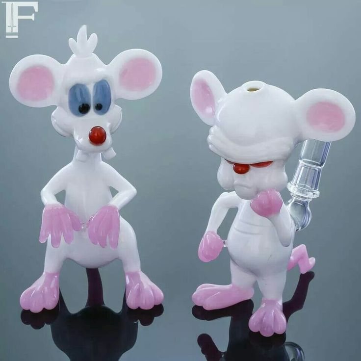 Awesome Pinky and the Brain smoking glassware set oil rigs for dabs http://www.buysalviaextract.com/ | DunksnDank