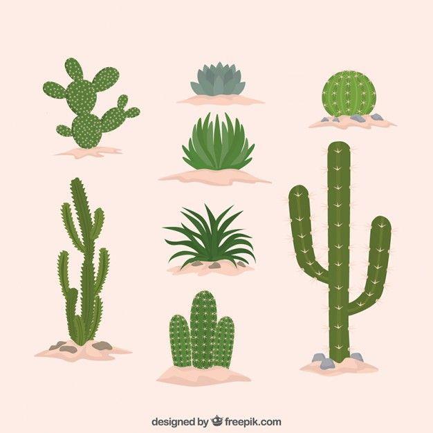 cactus-flat-design-collection_23-2147548121.jpg (626×626)