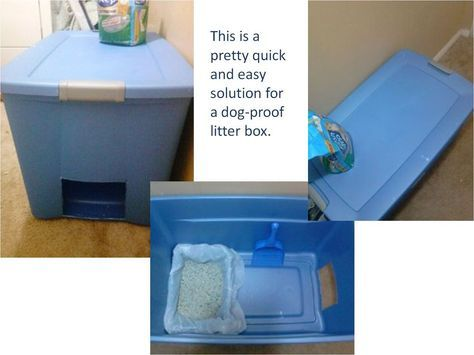 In my previous post some people asked what we did for dog-proof litter box. You just need a large storage bin, simple litter box, and some…