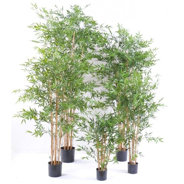 1000 id es sur le th me bambou artificiel sur pinterest for Plante verte artificielle ikea