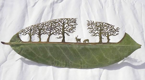 Inspired by the old paper-cutting techniques of Chinese and Japanese, Lorenzo Duran decided to apply them on leaves. The artist finds the perfect leaf and then washes, dries, molds and gently cuts away at it until he makes his incredible delicate art. It requires a lot of patience and it's easy to lose days of work in an instant, because fragile leaves can break right at the end. (Website: naturayarte.blogspot.com/)