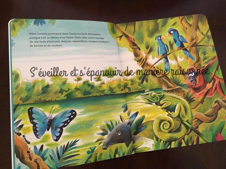 Parlons écologie avec les enfants : La légende du colibri de Denis Kormann – S…