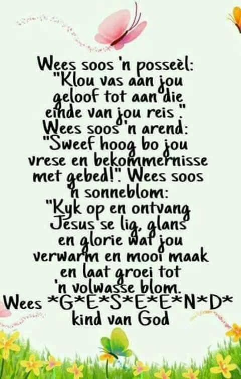 138 best images about afrikaans s so mooi on pinterest