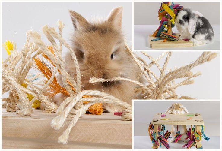 Juguetes antiestrés para conejos