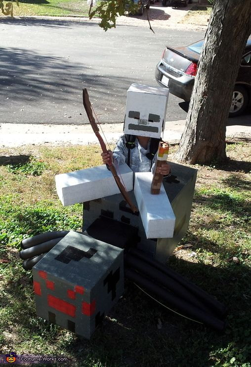 Joshua: This is a Minecraft themed Spider Jockey Costume. It has legs and a head that are controllable from inside the costume as well as a shirt and helmet combo for...