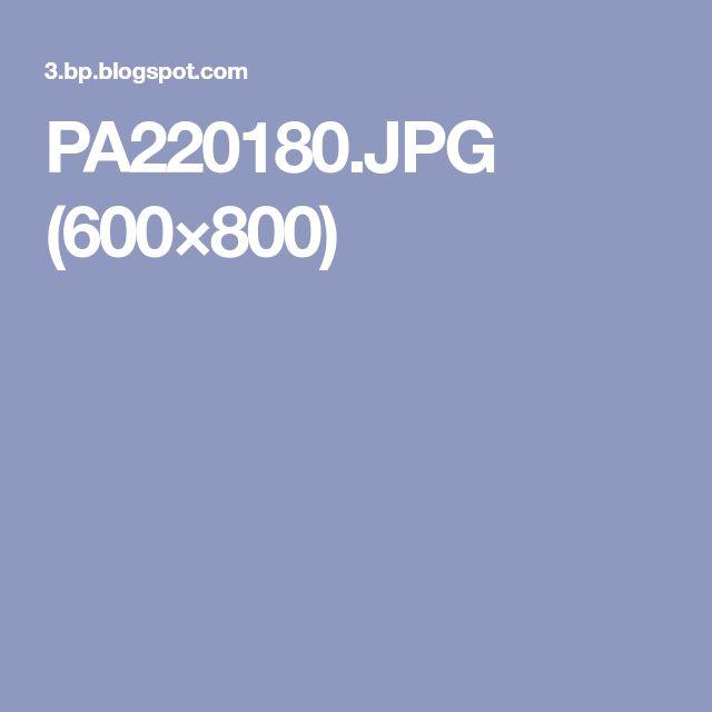PA220180.JPG (600×800)