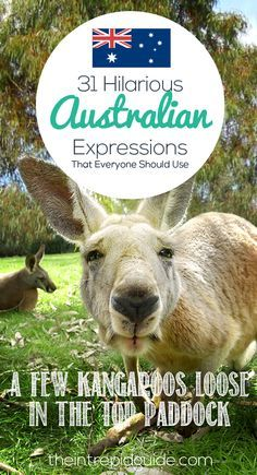 """Stop faffing around"" and use these 33 hilarious Australian expressions."