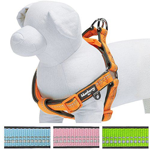 """Blueberry Pet Step-in Harnesses 3M Reflective 3/4"""" Medium Easter Spring Pastel Baby Orange Adjustable No Pull Padded Dog Harness From our Summer-Ready Pastel Must-have Collection, this dog harness is beautifully crafted with Read  more http://dogpoundspot.com/blueberry-pet-step-in-harnesses-3m-reflective-3-4-medium-easter-spring-pastel-baby-orange-adjustable-no-pull-padded-dog-harness/  Visit http://dogpoundspot.com for more dog review products"""