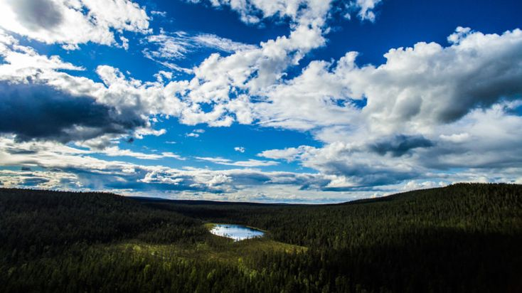 Explore the wilderness – Photography expedition - Rovaniemi, Lapland, Finland