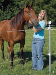 Electric Fencing for Horses - Premier1Supplies