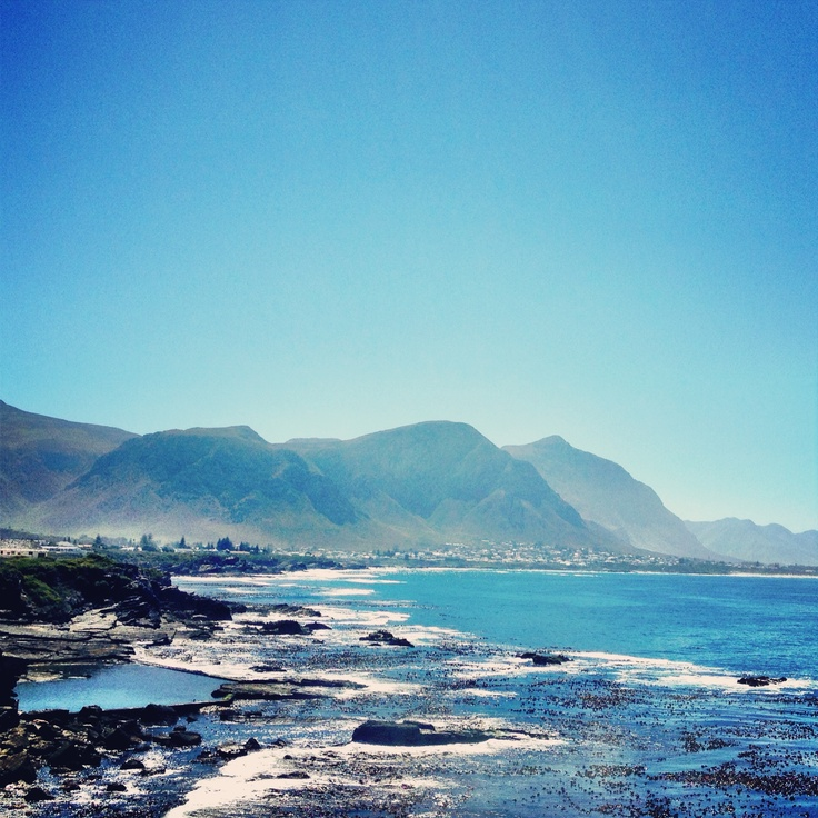 Hermanus, the most beautiful town in the world.