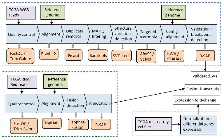 TRUFA u2013 A User-Friendly Web Server for de novo RNA-seq Analysis - new blueprint gene expression