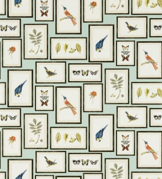 Picture Gallery - Sanderson Wallpapers - A unique wallpaper featuring framed souvenirs of various animals.