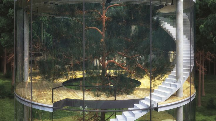 Almaty, Kazakhstan. - this transparent structure has an open circle in the middle of it, revealing an amazing fir tree