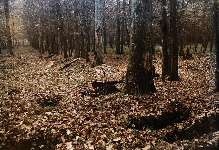 Remnants of the Battle of Belleau Wood (Bois de Belleau).