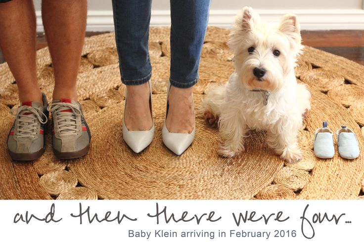 Pregnancy announcement with dog/ puppy
