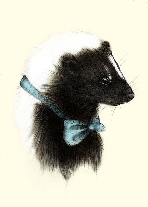 117 Best Images About Skunk Drawings On Pinterest Disney