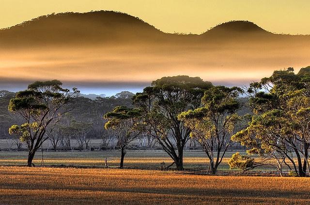 Mount Chester Ravensthorpe, Western Australia