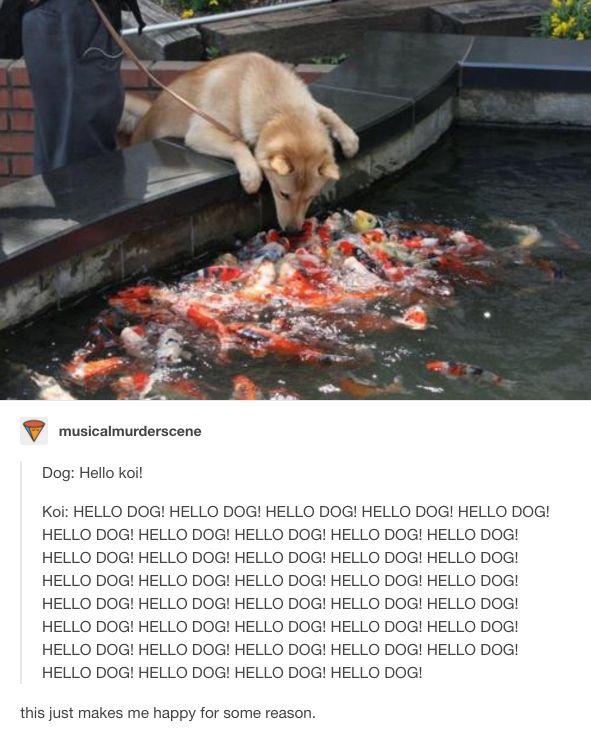 """""""Als ich mit meinem Freund beim Eisfischen war, riss sein Hund aus dem Haus aus und besorgte sich einen Job."""""""