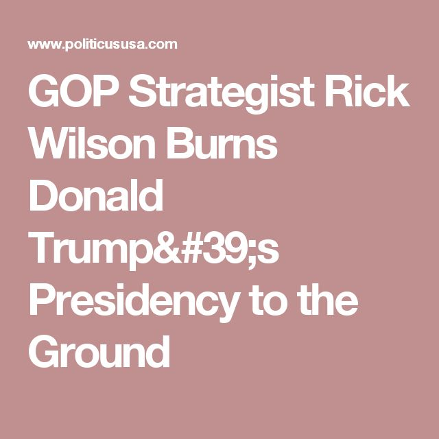 GOP Strategist Rick Wilson Burns Donald Trump's Presidency to the Ground