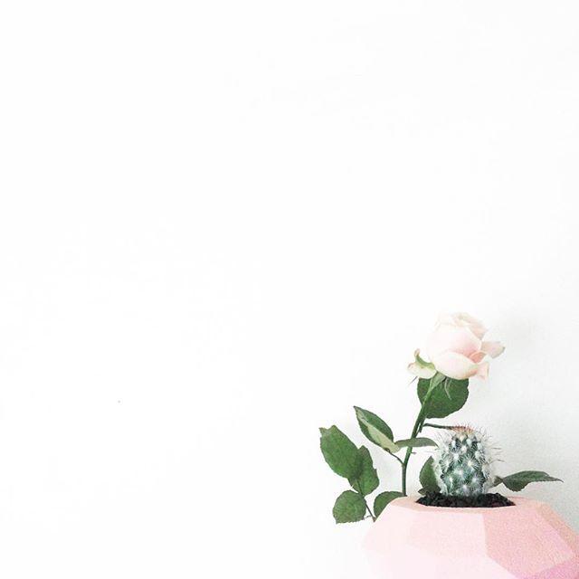 белый лист с цветами картинки ювелирных украшений