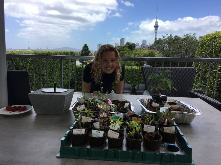 Charlotte with grandads vegetable seedlings from Newworld
