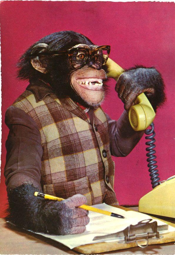 aan de telefoon mannetje