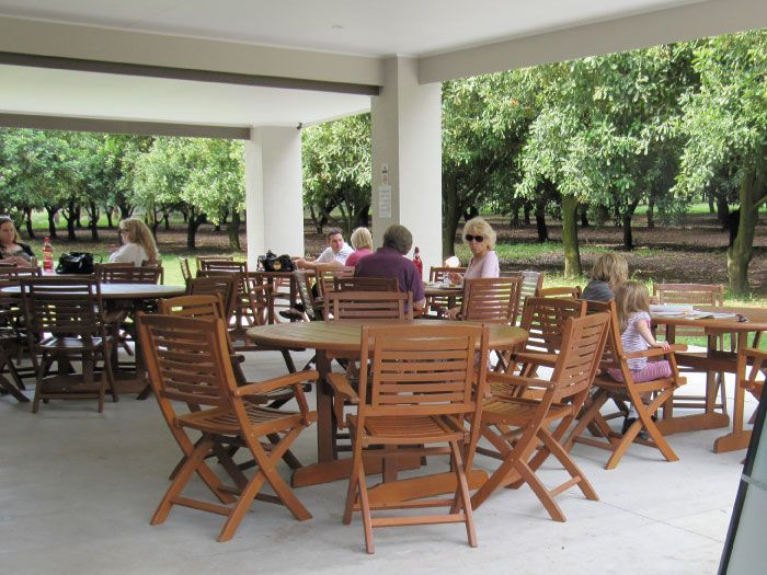 Medowie Macadamias is an award winning cafe open daily. Enjoy delicious Macadamia inspired breakfasts or lunches in a tranquil plantation setting. Indulge in a fine selection of Macadamia cakes & slices. Medowie, Port Stephens.
