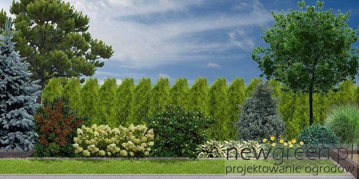 Projekt ogrodu przydomowego | NewGreen projektowanie ogrodów | architektura krajobrazu