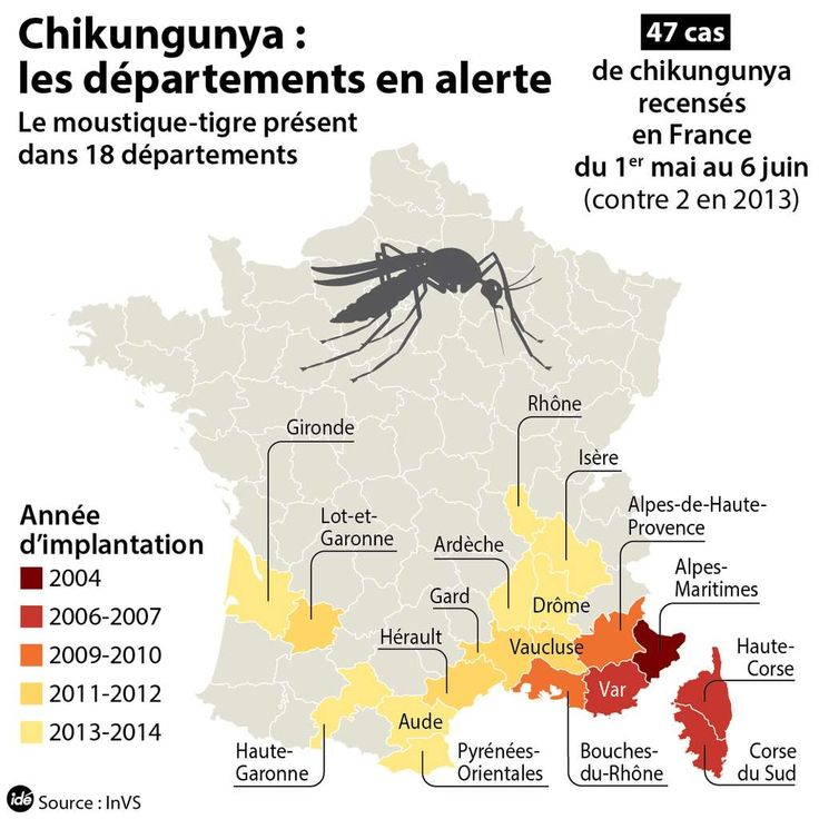 En 2014, le moustique-tigre était présent dans différents départements français et pouvait transmettre le chikungunya en France métropolitaine