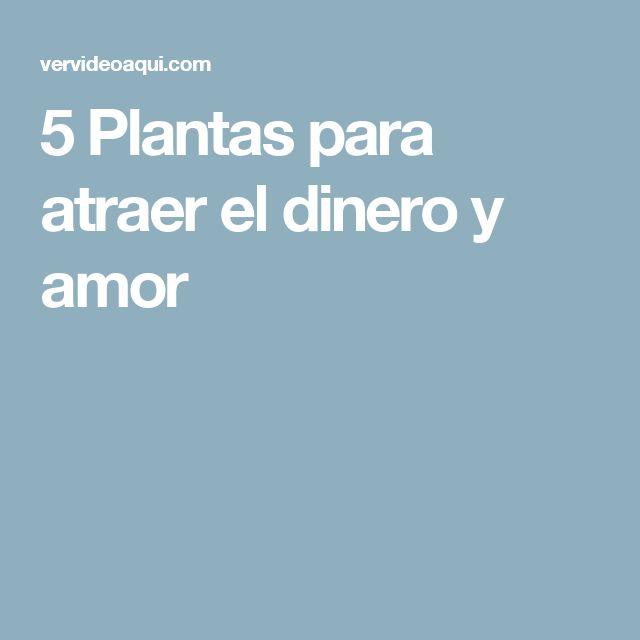 5 plantas para atraer el dinero y amor todo para el jardin - Atraer el dinero ...