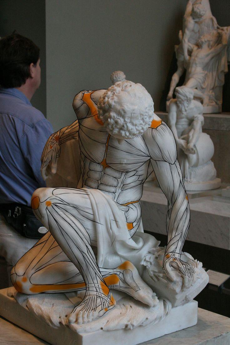 Jacque Choi: Louvre Écorché