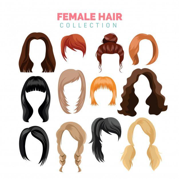 Female Hair Vector Collection Hair Vector Womens Hairstyles Hair Sketch