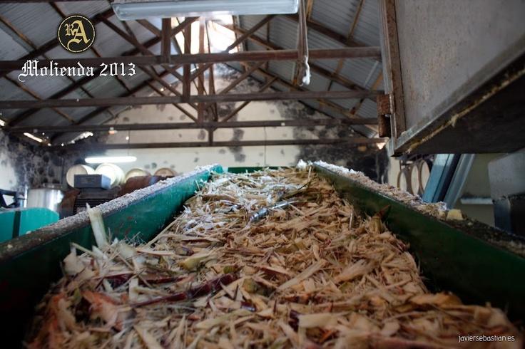 #ronaldea #lapalma #islacanarias #ron #rum #canaryislands    Detalle de la caña troceada viajando por una de las cintas transportadoras camino al molino.