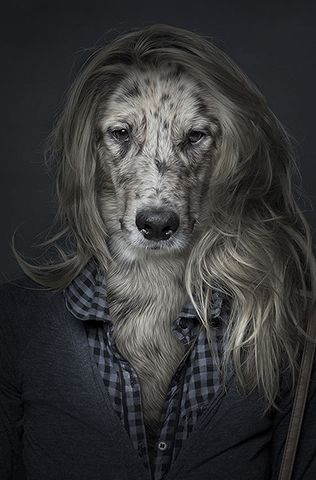 this is the second dog-woman I have seen on here today.. what is going on?
