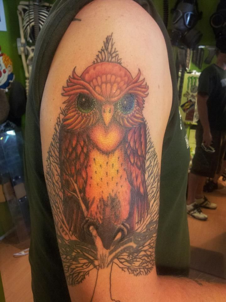 800 Best Images About Owls Tattoos Amp Artwork On