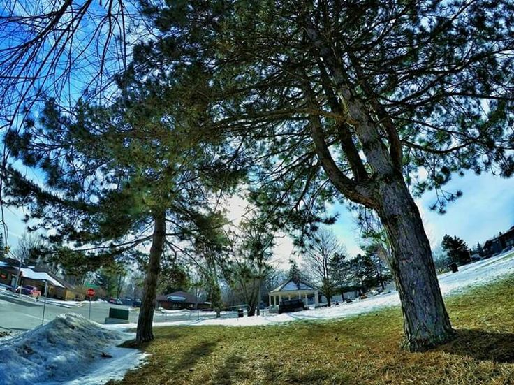 Peace Park, Fonthill,  Ontario