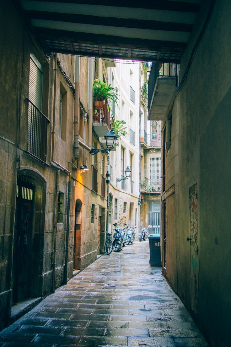 The Only Guide You'll Ever Need To Barcelona