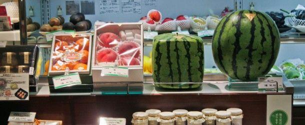 La pastèque carrée au Japon : un fruit sous toutes ses formes
