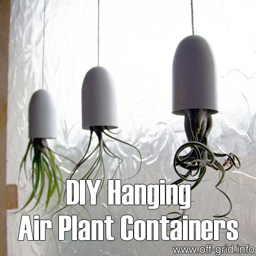 DIY Hanging Air Plant Containers►►http://off-grid.info/blog/diy-hanging-air-plant-containers/?i=p