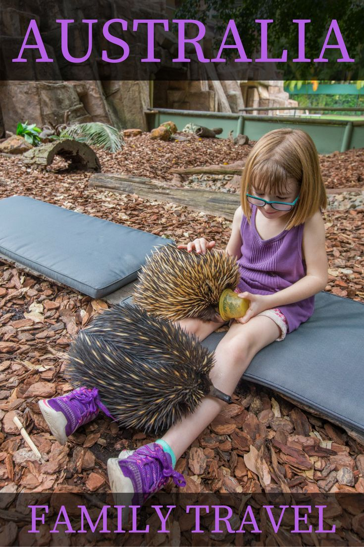 For my daughter's six-year-old trip she said that she wanted to cuddle with Australian animals. Done! Here's a recap of our trip to Brisbane and Sydney.