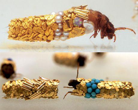 Et naturligt perlesmykke. I 1980'erne fik en fransk kunstner en rigtig spændende ide – han havde længe studeret, hvordan vårfluelarverne byggede deres hus af sten og træ, men hvorfor ikke lade dem bygge huse af guld, perler og ædelstene? Som tænkt, så gjort – og ud af det kom der nogle fantastiske små kunstværker. Hubert Duprats smukke vårfluer.  Lav selv vårfluekunst. I kan også lave kunstværker og smykker med hjælp fra vårfluelarverne. Først skal I fange nogle vårfluelarver, der bygger…