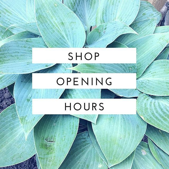 Happy weekend everyone! Just a reminder that the shop is closed from today until 11 October 🌿 we are still accepting online orders and completing bespoke orders during this time 🌸🌸🌸 Please check out the website for October opening times:  www.sarahblythe.com/contact