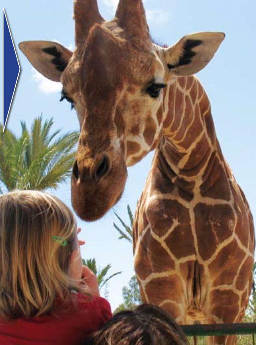 Kystens dyreparker Costablanca | Spania24.no