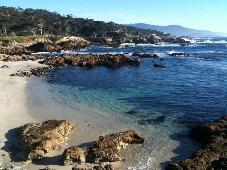 Trending Carmel Ca Ideas On Pinterest Carmel California - 7 unforgettable backdrops on californias 17 mile drive