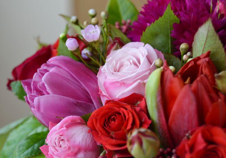 Розово красные цветы