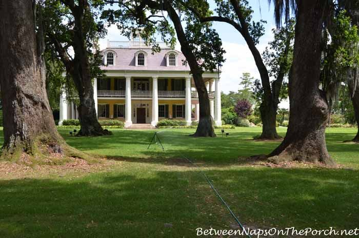 The Beautiful Gardens of Houmas House Plantation