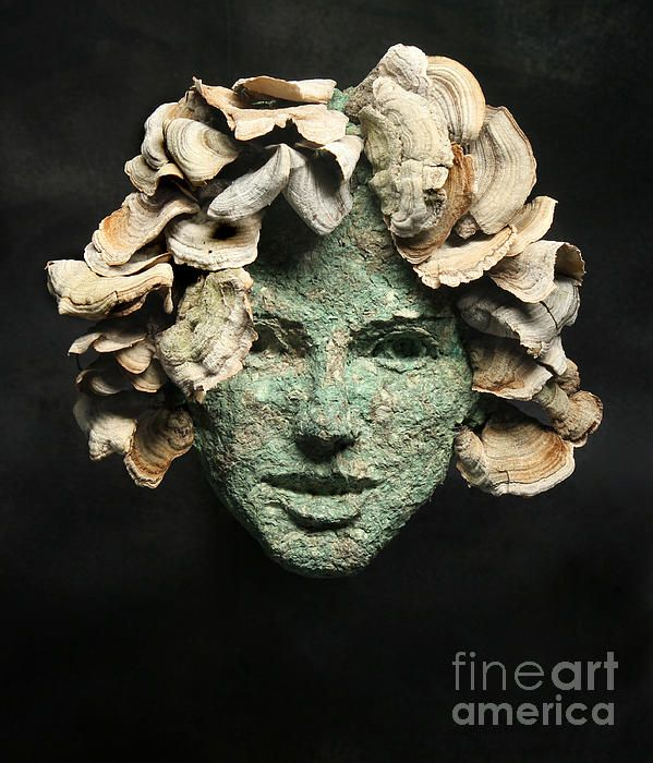 ! Relief sculpture of a beautiful young natural woman gazing at you created from reclaimed materials and preserved shelf fungus.