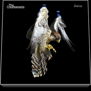 The Courteeners / Falcon