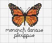 Schema punto croce Monarca